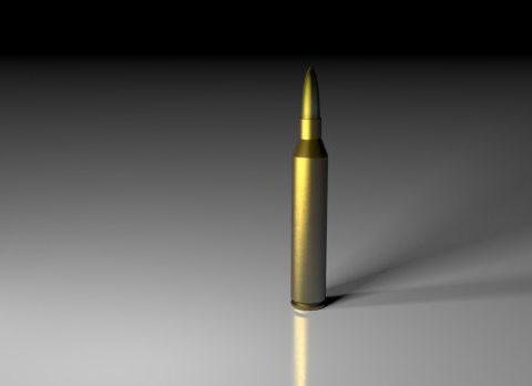 Bullet + Shell Rifle