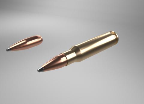 308 bullet