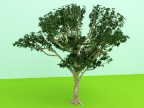 tree 3d max model