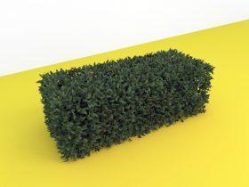 Hedge 3d max model