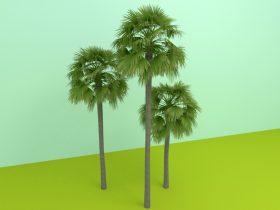 tree 3d free model