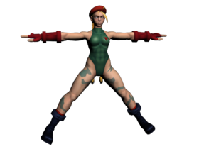 Cammy SSFIV 3D model
