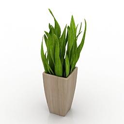 Flower 3d model