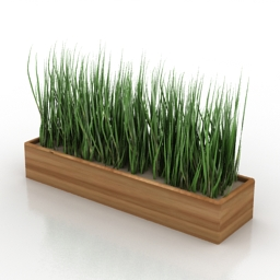 Grass in box 3d model