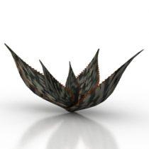Plant Aloe Harlani 3d model