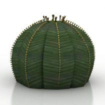 Plant Euohirbia Obesa 3d model