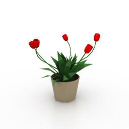 Tulips 3d model download
