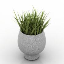 Vase grass 3d model