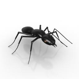 Ant Black 3d model