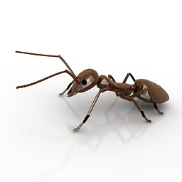 Ant Downloadfree3d Com