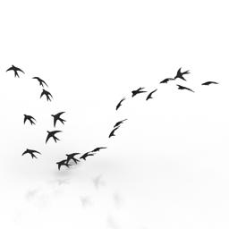 Flock 3d model