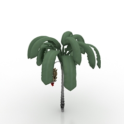Other Plants 3D Models Free Download | DownloadFree3D com