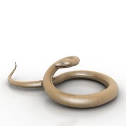 Snake 3d model