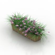 Flowers box 3d model