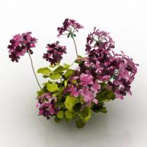 Flowers garden 3d model