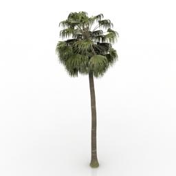 3D Trees Models Free Download | DownloadFree3D com