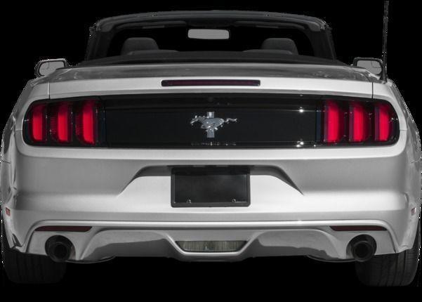 Cartoon Mustang