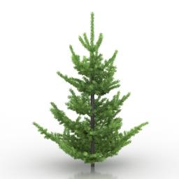 Tree Abies Pardei 3d model