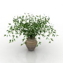 Plant vase flower 3d model
