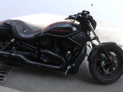 Harley Harleevich 3D model