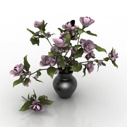 Vase magnolia flowers 3d model