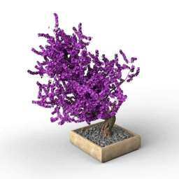 Bonsai Flower 3d model