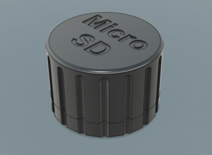 MicroSD card case with locks
