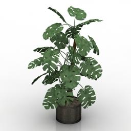 Plant house Mano de leon 3d model